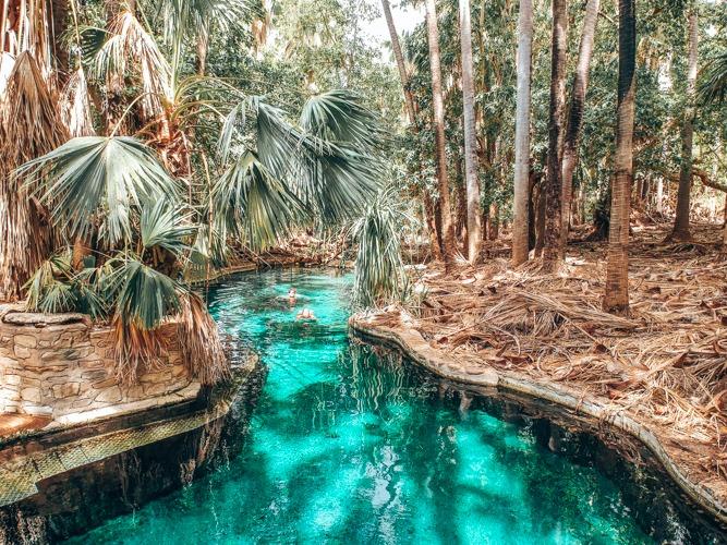 source d'eau chaude Road trip Darwin Adélaïde